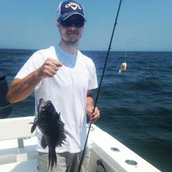 Bachlelor Party Trip Sea Bass Limit4 Hour LBI Trip Lands Sea Bass Limit