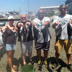 4 Hour LBI Trip Lands Sea Bass Limit
