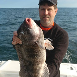 A 9.5 lb. LBI Blackfish For Capt. Greg