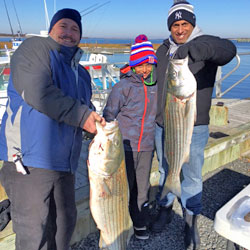 First Time Striper Catchers land A 30 Pounder
