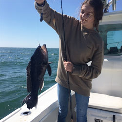 40 Nice Big Blue Sea Bass