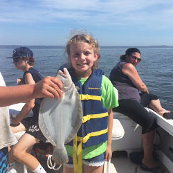 Slow Barnegat Bay Trip Brings Home Only One Fluke