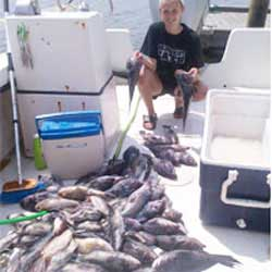 Barnegat Light Trip Boxes 100 Sea Bass