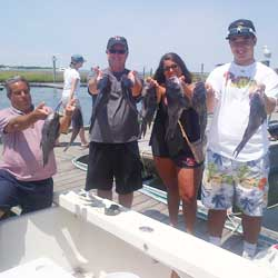 High Hook Bags 21 LBI Sea Bass