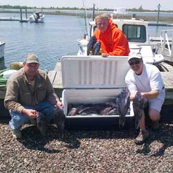 Barnegat Light Sea Bass Trip Puts 60 In The Box